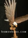 eagle-avatar