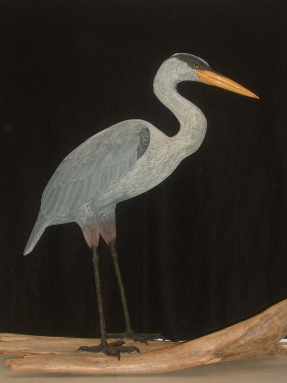 Great Blue Heron (l/s) by: Bill & Marilyn Gulker
